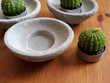 Lot de 3 bougies cactus sur socle - NEUF (+ 3 bougies en cad Décoration