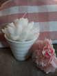 Bougies lotus Blanc + Vase - NEUF