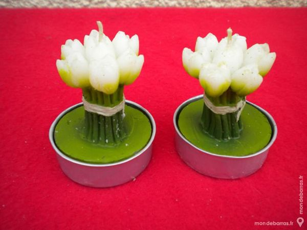 2 BOUGIES « Tulipes » 3 Dammarie-les-Lys (77)