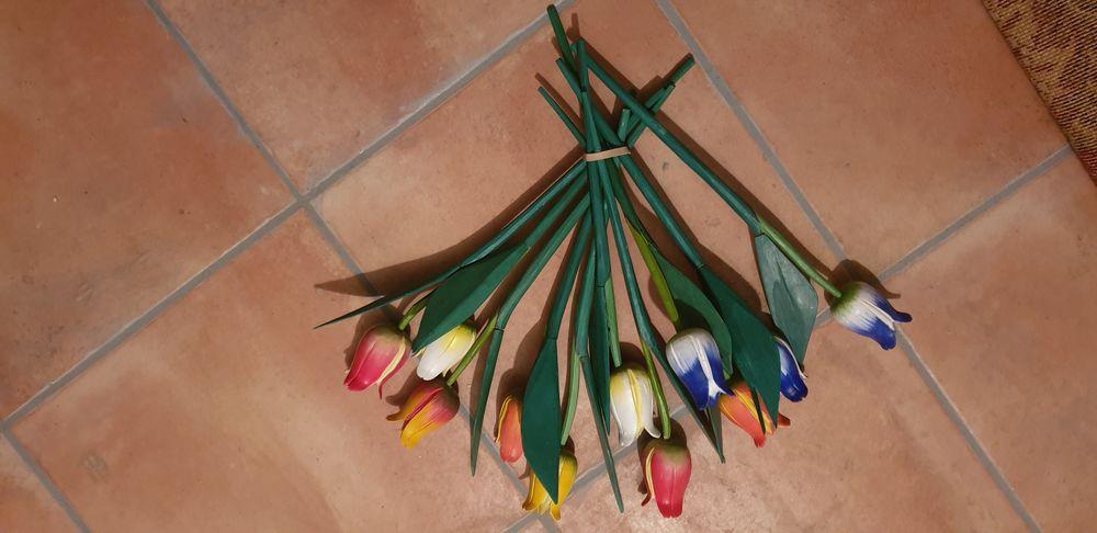 Bouquet de tulipes bois 5 Gaillac (81)