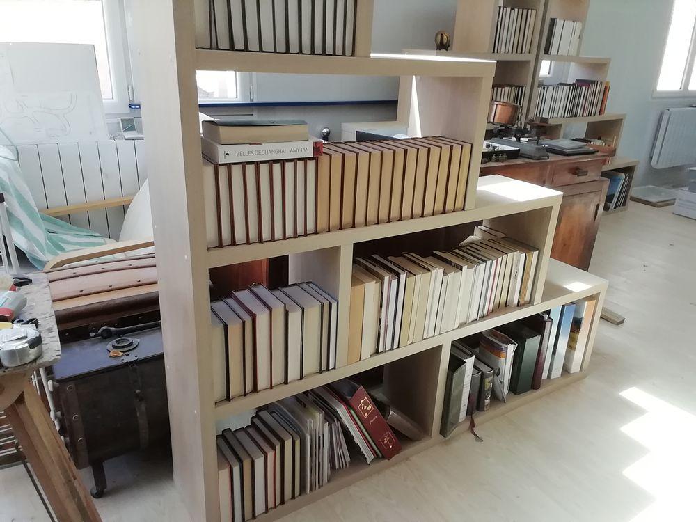 lot de bouquins et livres 0 Saint-Nazaire-d'Aude (11)