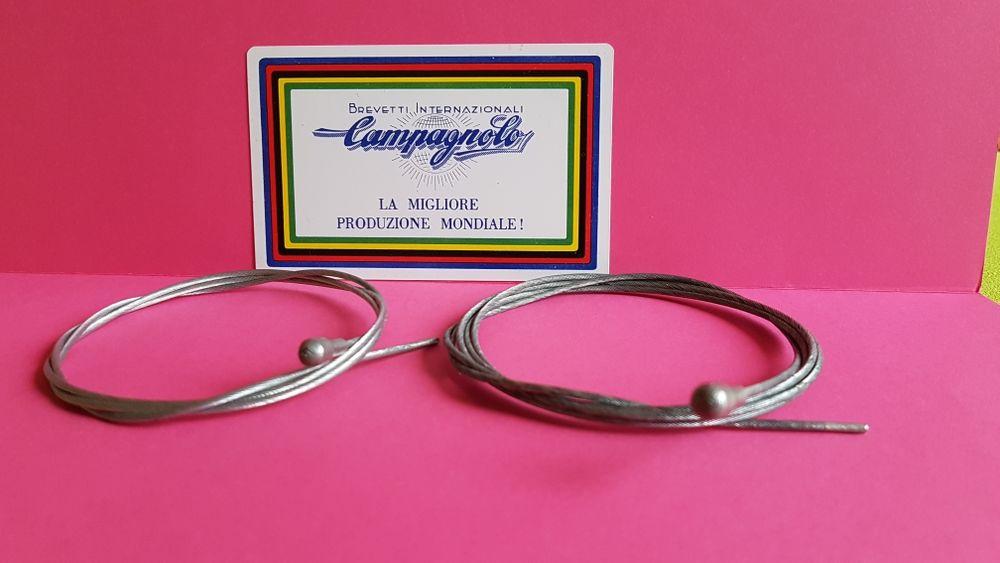 CABLES CAMPAGNOLO 0 Bordeaux (33)