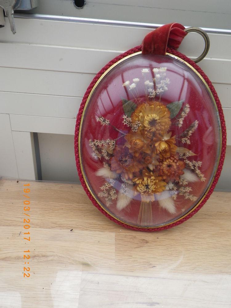 cadre fleurs séchées 0 Périgueux (24)