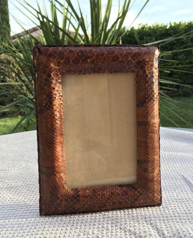 Cadre photo authentique ancien,peau de serpent et cuir zébu Décoration