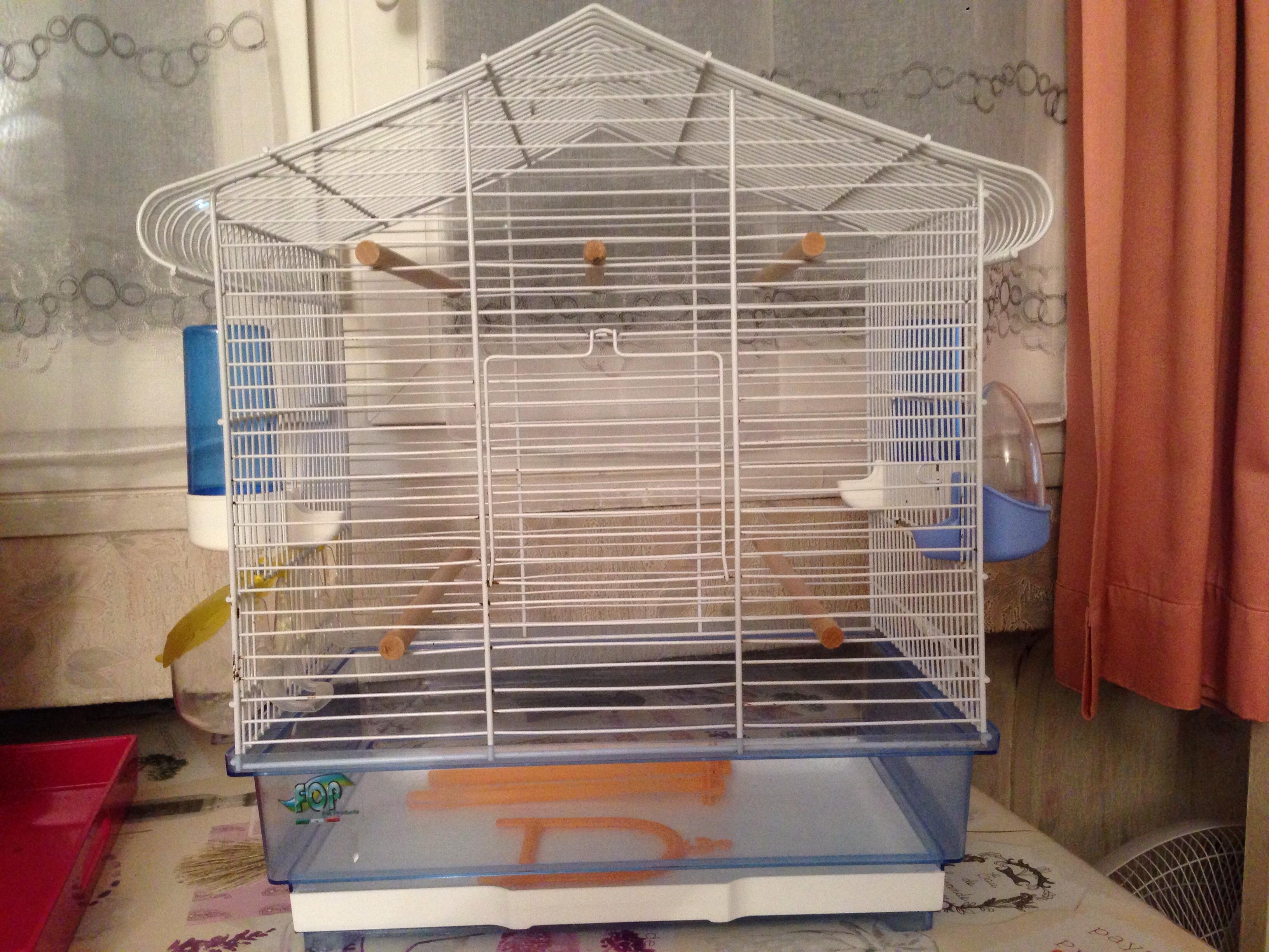 Cage pour petit oiseau 45 Le Plessis-Robinson (92)