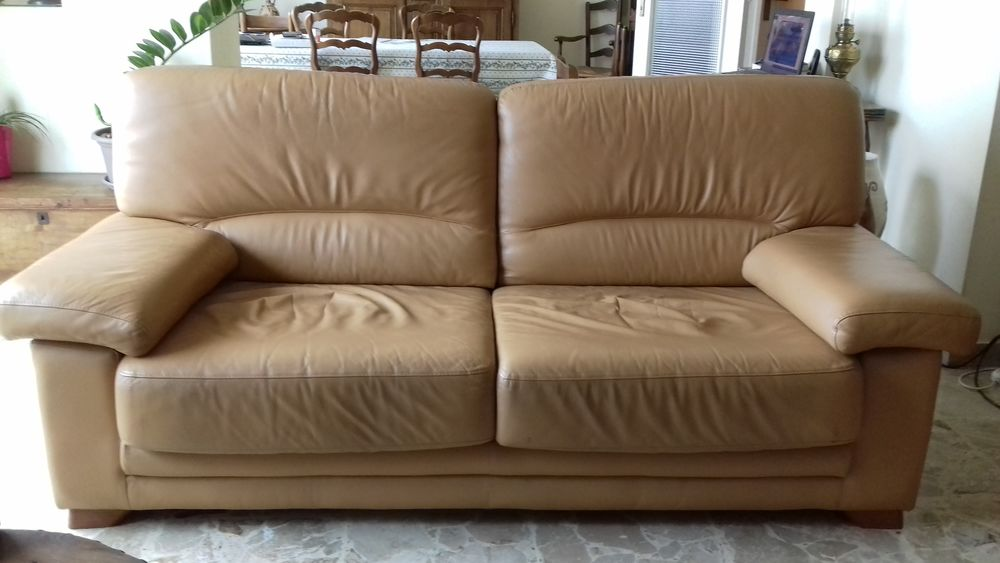 Canapé convertible cuir et fauteuil fixe. 250 Cannes (06)