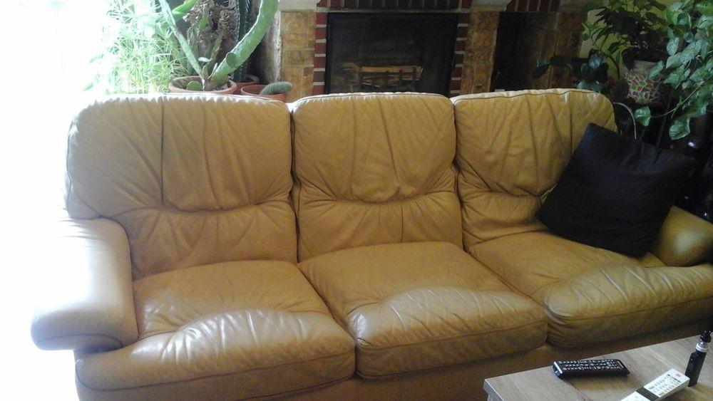 Canapé  cuir avec ses deux fauteuils  500 Tours (37)