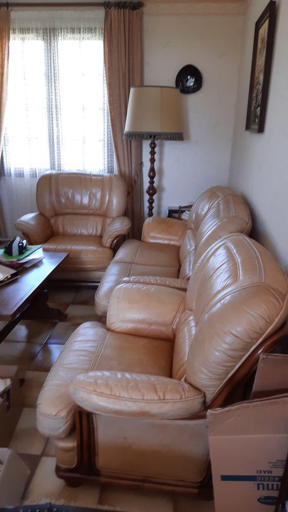 Canape en cuir et les 2 fauteuils en cuir beige  800 Sognolles-en-Montois (77)