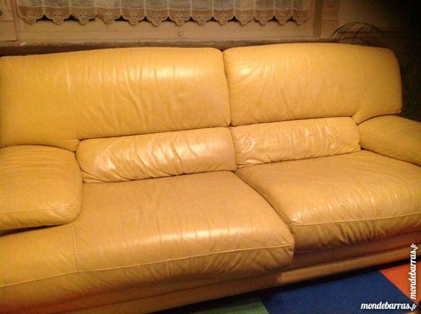 Achetez canap cuir jaune occasion annonce vente douai for Canape 3 metres