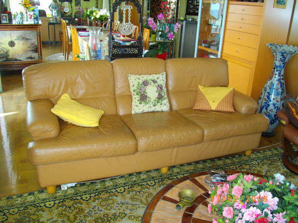 CANAPE CUIR 3 PLACES 250 Nice (06)