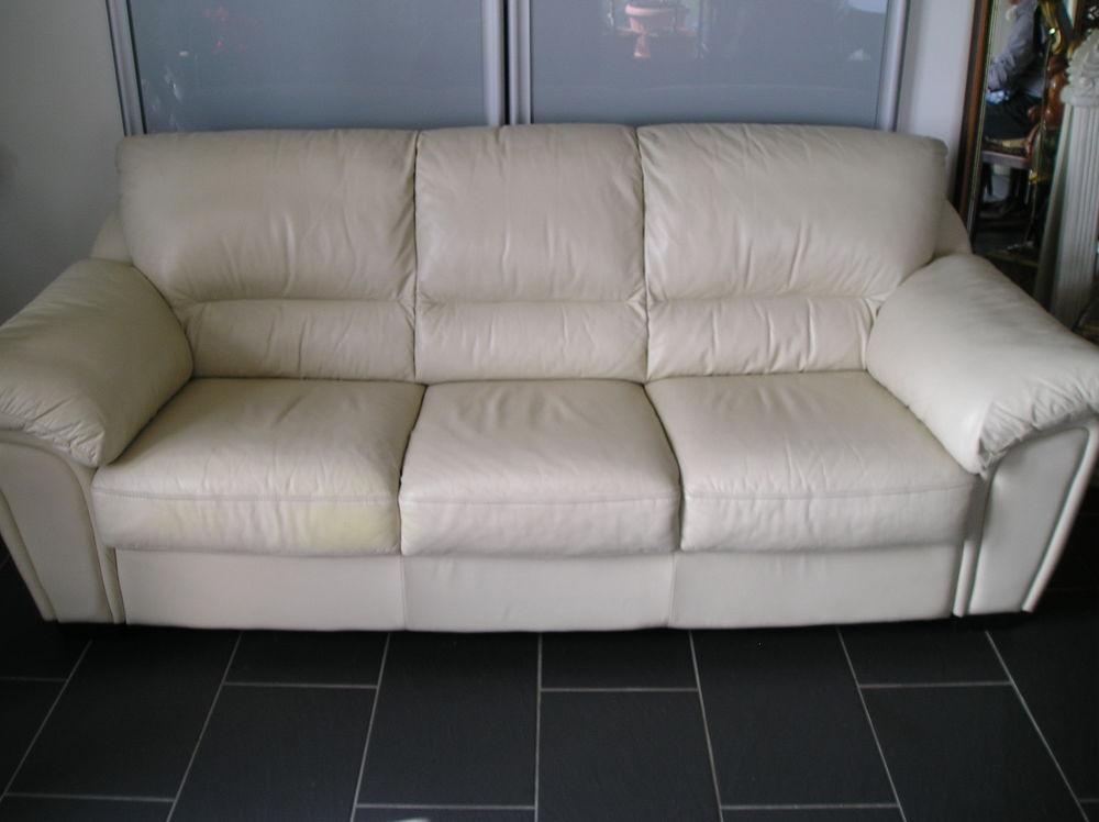 Achetez canap en cuir 3 occasion annonce vente mont de for Garde meuble mont de marsan