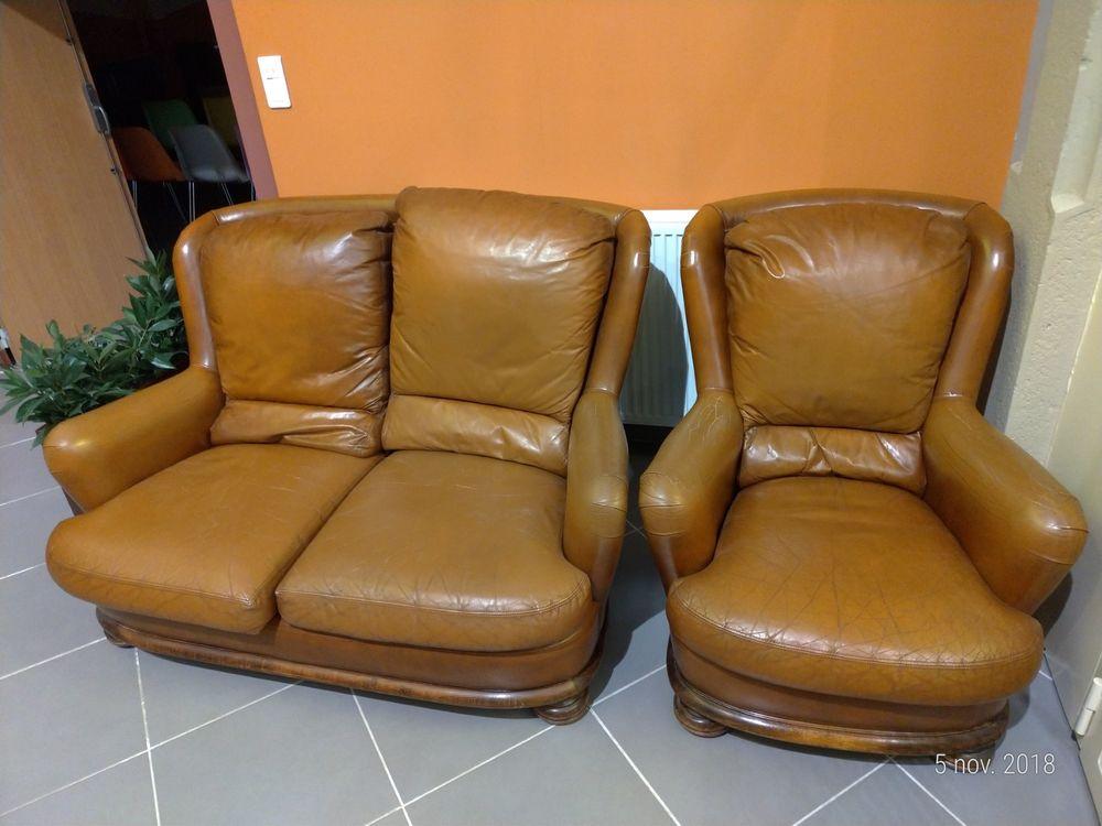 Canapé cuir 2 places et fauteuil 1 place 320 Lyon 7 (69)