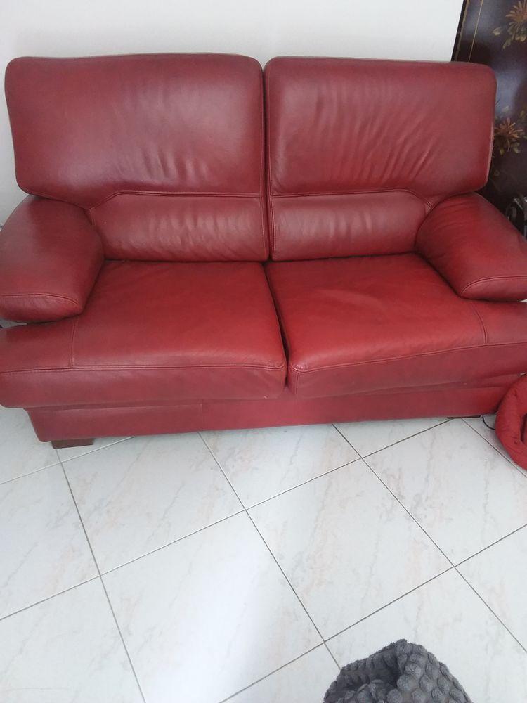 Canapé cuir rouge  250 Blausasc (06)
