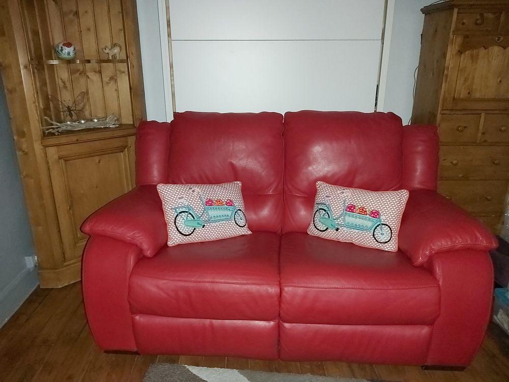 Canapé en cuir rouge, 2 places 350 Paris 15 (75)