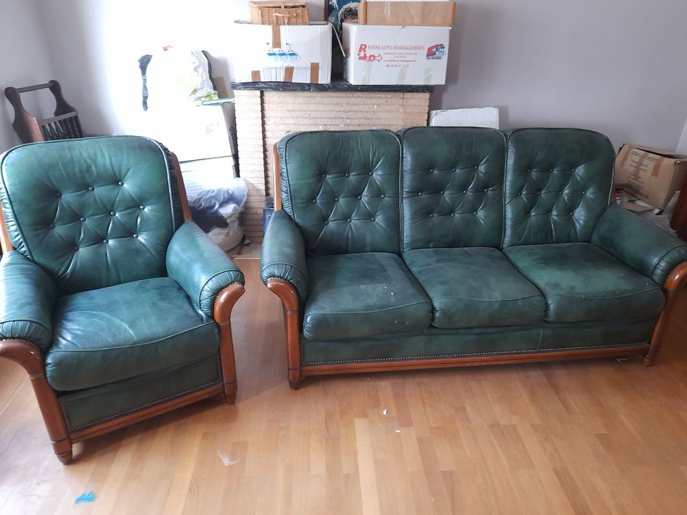 canapé cuir vert 250 Chambéry (73)