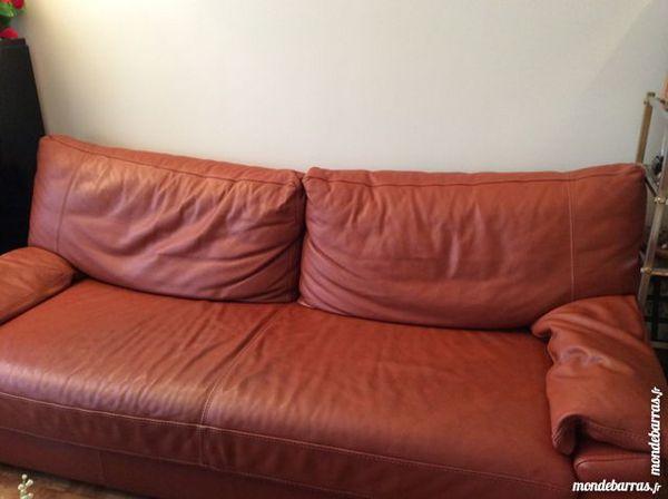 Achetez canap en cuir type occasion annonce vente saint cloud 92 wb1531 - Type de cuir pour canape ...