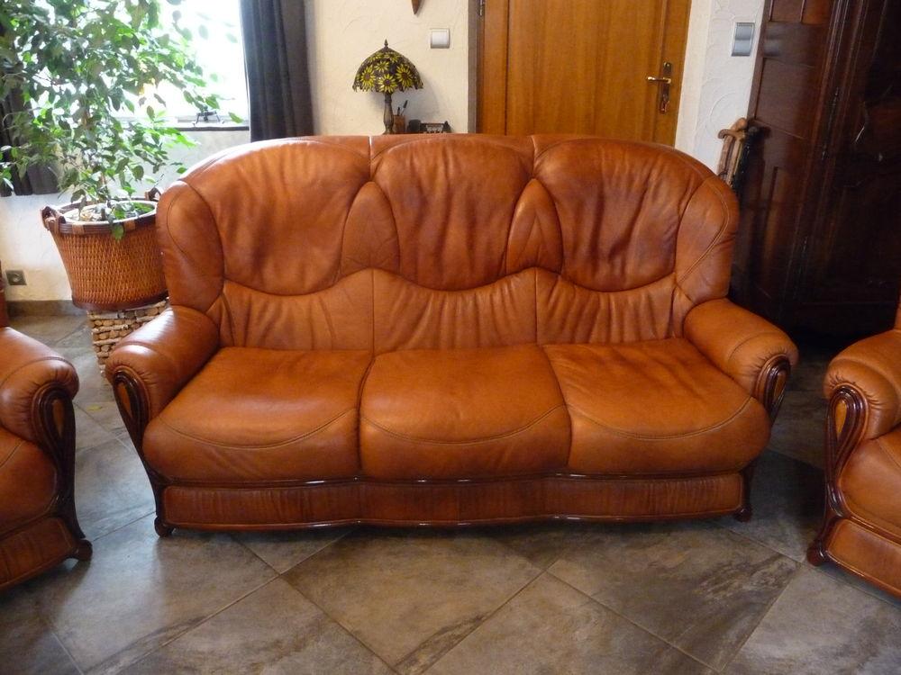 canapé cuir 500 Villevocance (07)