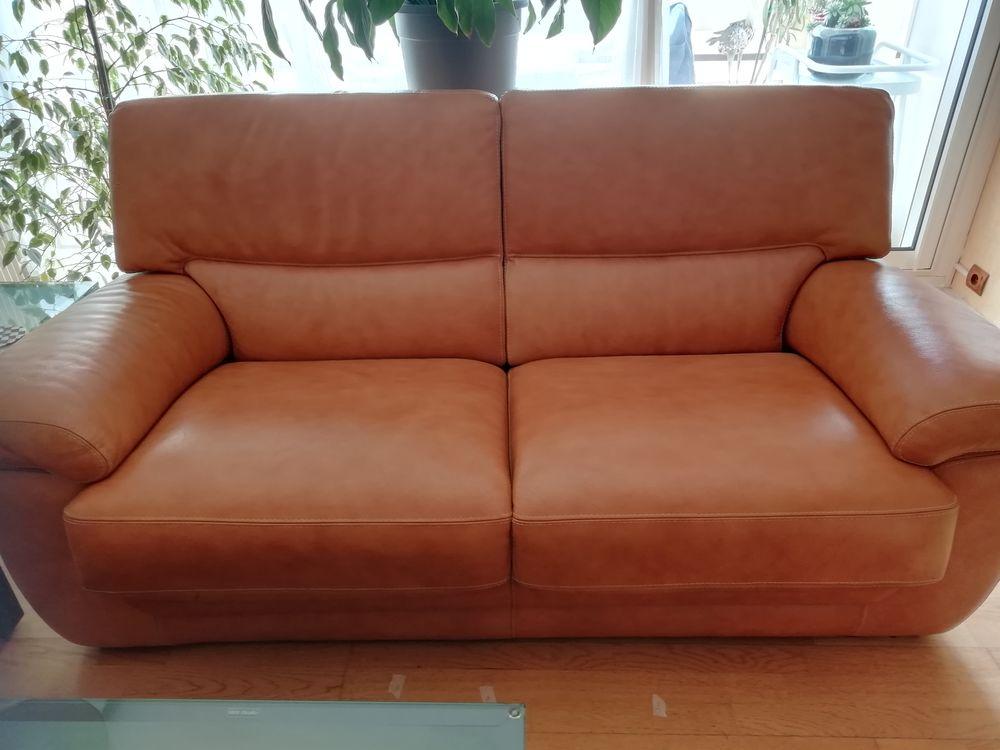 Canapé cuir. 120 Caluire-et-Cuire (69)