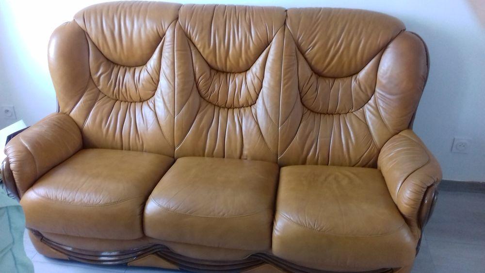 Canape cuir  100 Rosporden (29)