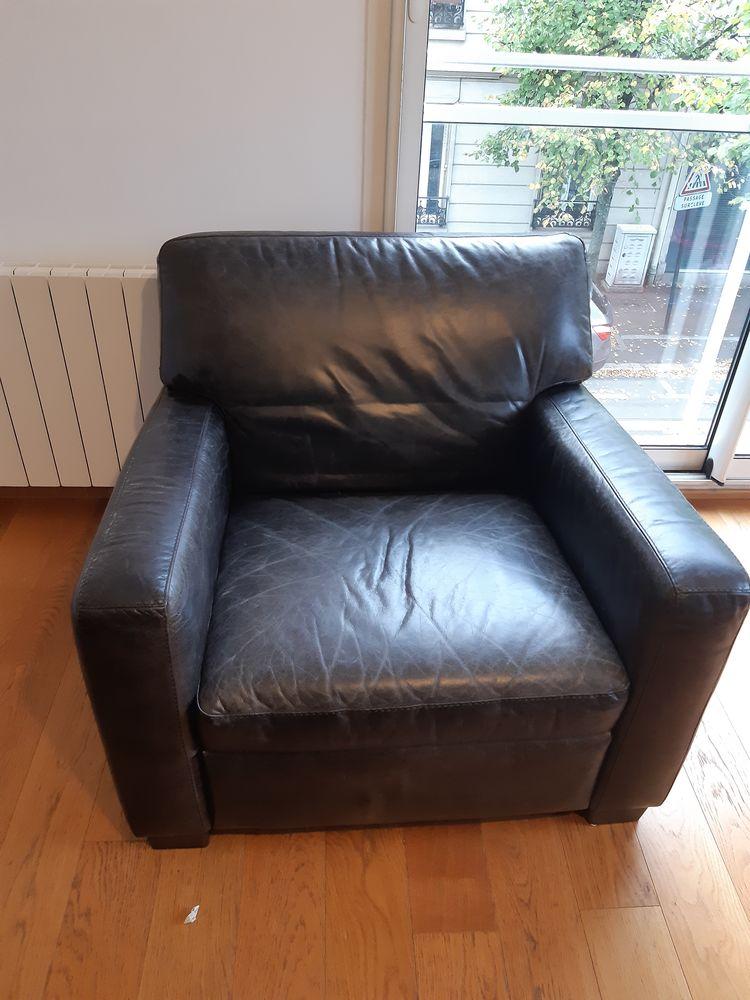 canapé + fauteuil en cuir de buffle 0 Saint-Maur-des-Fossés (94)