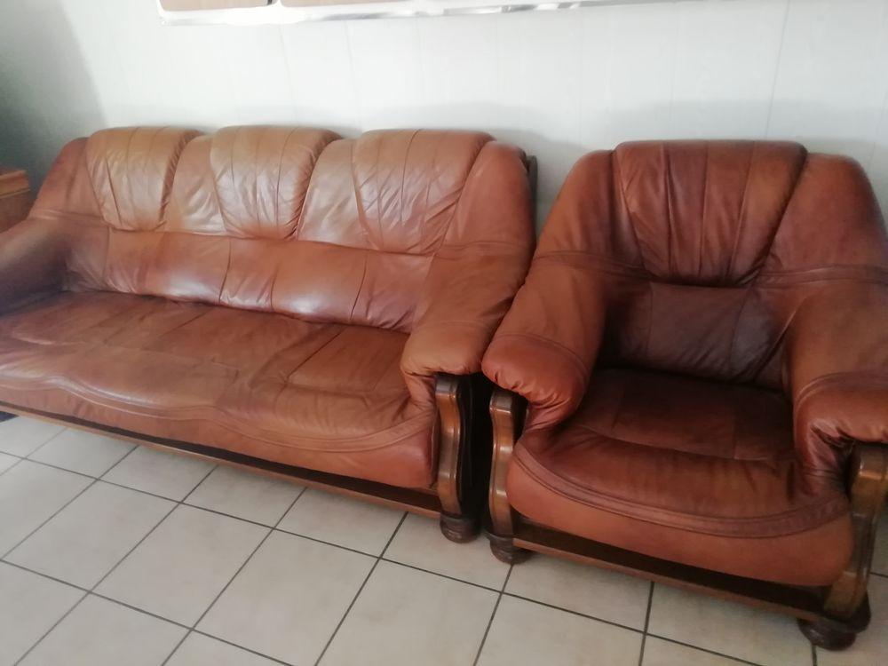 un canapé et 2 fauteuils 800 Sainte-Sigolène (43)