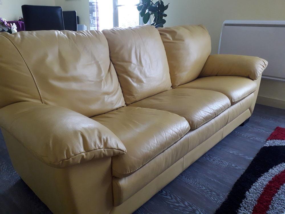 Canapé et feux fauteuils  100 Lanmeur (29)