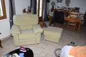 canape 2 place + fauteuil + pouf 300 Ouzouer-sur-Loire (45)