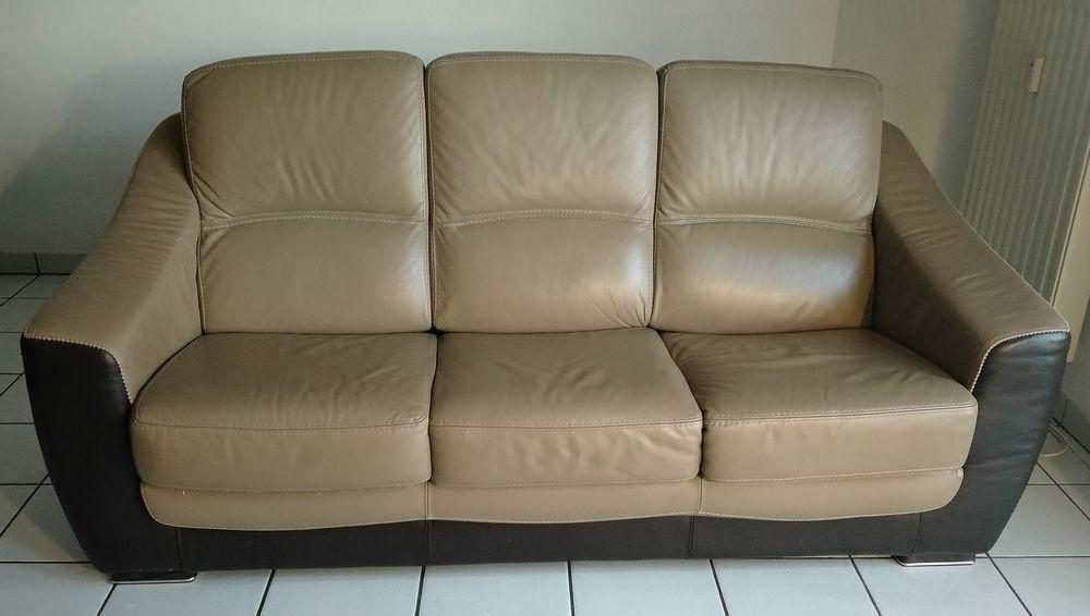 mon canapé 3 places en cuir 250 Rouen (76)