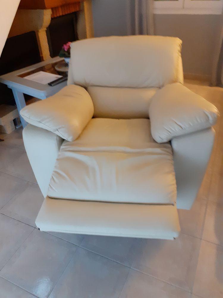 Canapé  3 places et 1 à  une place en cuir 300 La Fare-les-Oliviers (13)