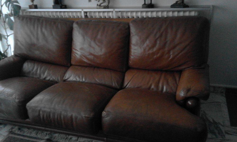 canape de salon cuir 100 Tignieu-Jameyzieu (38)