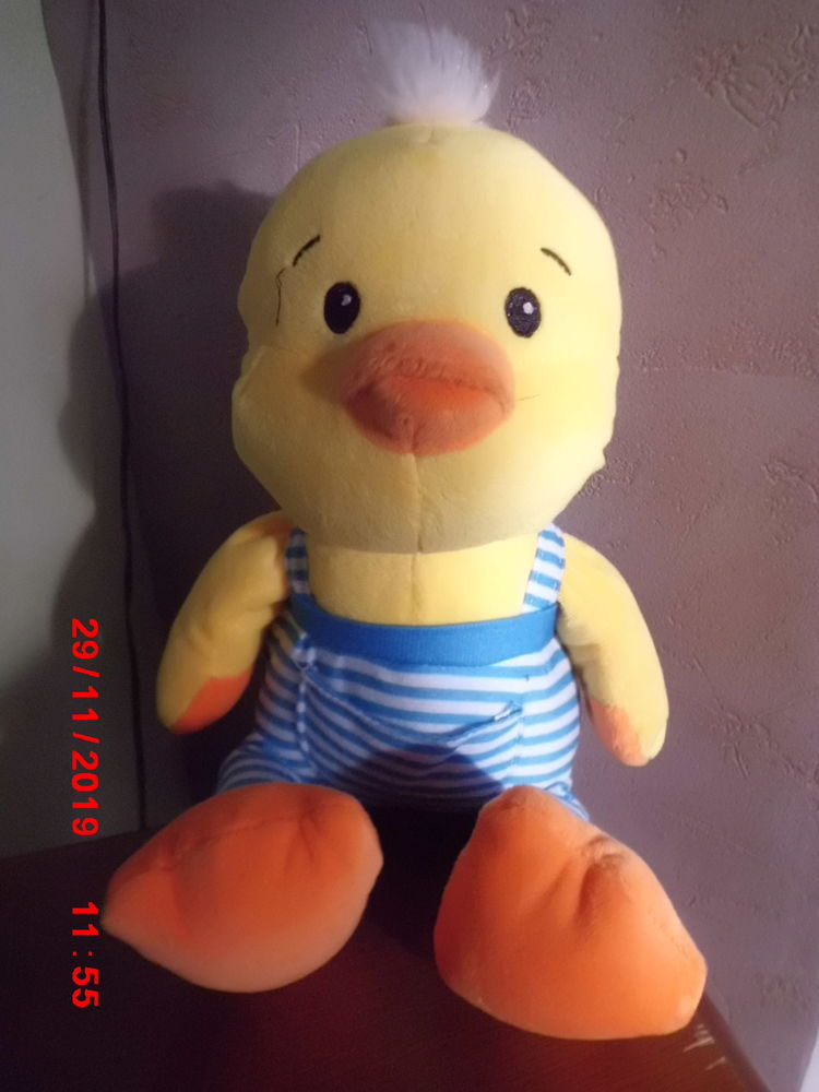 CANARD SONORE FIZZY 13 Oignies (62)
