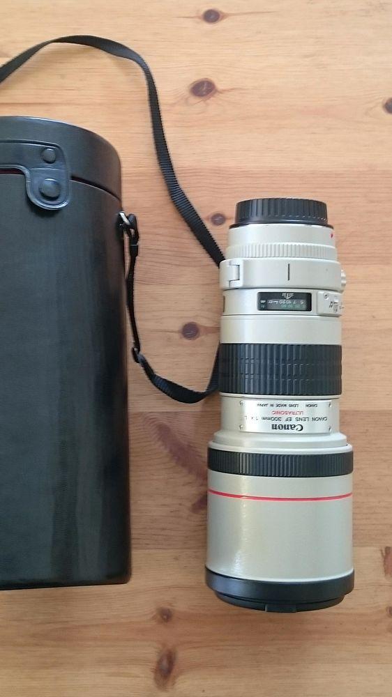 Canon EF 300 mm f: 4 serie L USM Ultrasonic 850 Bénodet (29)