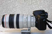 Canon EOS 7D + Zoom 100-400 mm 1600 13011 (13)
