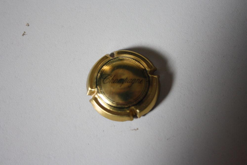 capsule de champagne generique 1 La Verdière (83)