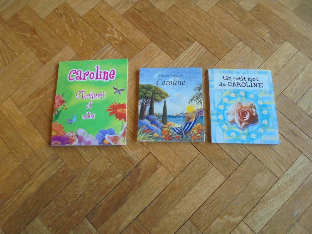 Carnets Caroline (38) 5 Tours (37)