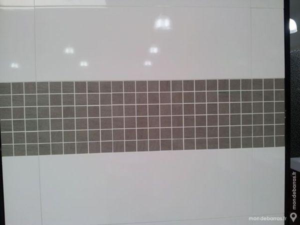 achetez carrelage mural occasion annonce vente 224 villeneuve d ascq 59 wb152722746