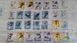 Lot de cartes Pitch 'Team' translucides