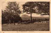cartes postales anciennes 10 Biot (06)