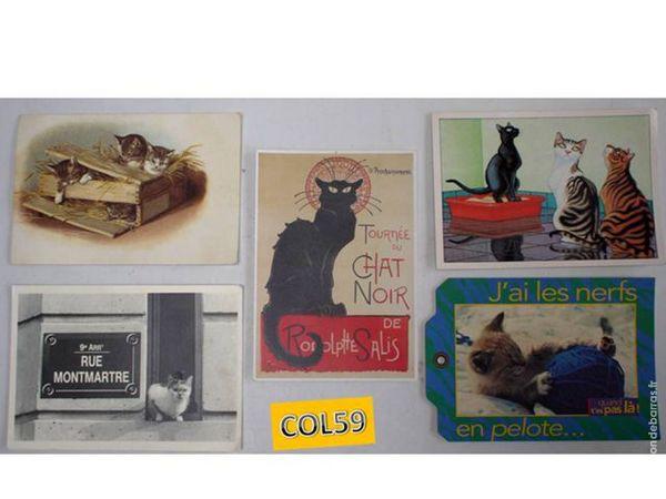 5 cartes postales sur les chats - lot6 5 Mons-en-Barœul (59)