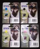 lot de cartouches d'encre pour EPSON stylus 150 Saint-Laurent-Nouan (41)