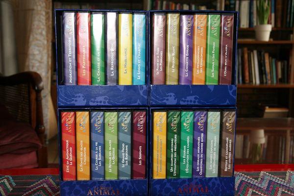 cassettes VHS Règne animal 25 Cergy (95)