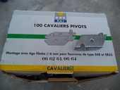 100 cavaliers pivots de suspentes 20 Cagnes-sur-Mer (06)