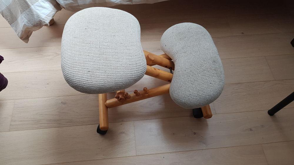 chaise ergonomique pour le dos  0 Courpalay (77)
