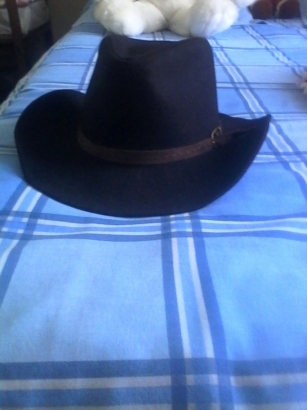 chapeau de cowboy 20 La Machine (58)