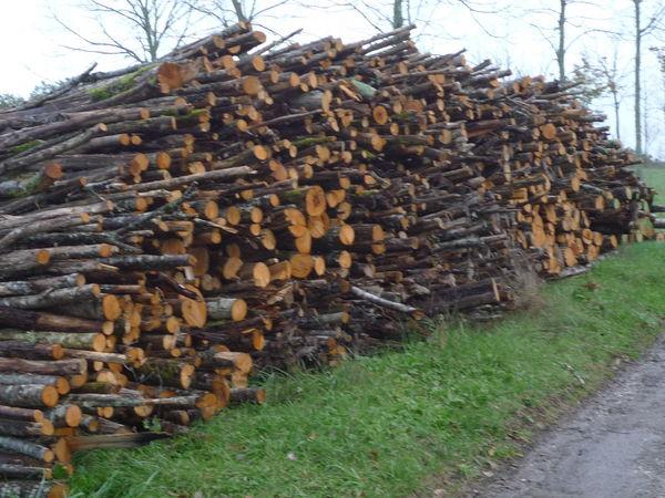 Achetez chataignier bois occasion, annonce venteà Durfort Lacapelette (82) WB152096951 # Bois Chataignier Chauffage