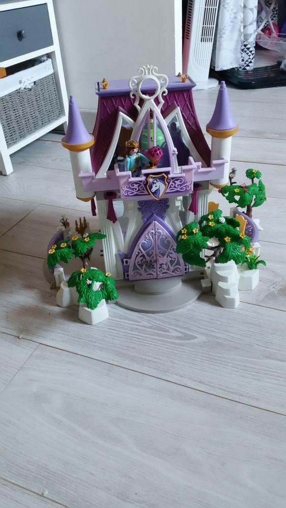 Château de princesse Playmobil 0 Cormery (37)