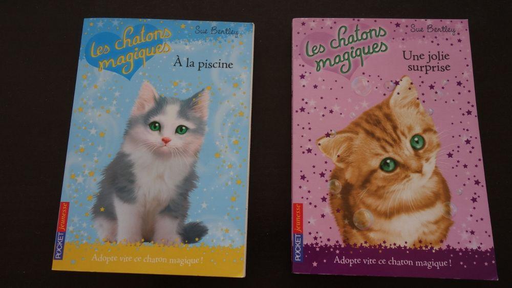 Les chatons magiques 2 Hyères (83)