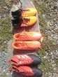 Chaussures de foot La Gacilly (56)