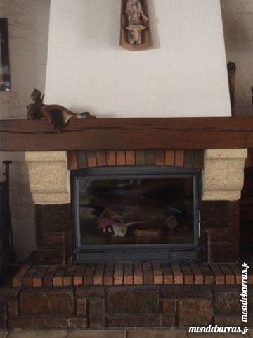 Achetez chemin e avec insert occasion annonce vente - Modele cheminee avec insert ...