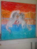 chevaux de camargue 40 Montpellier (34)